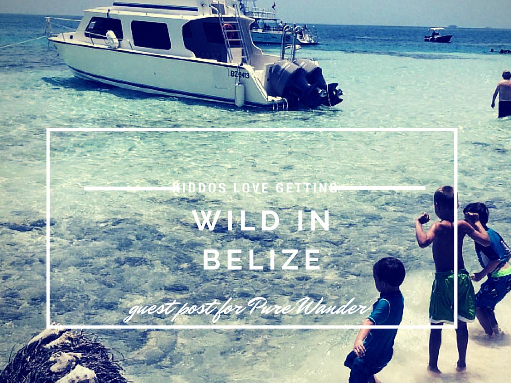 BelizePureWander1.png