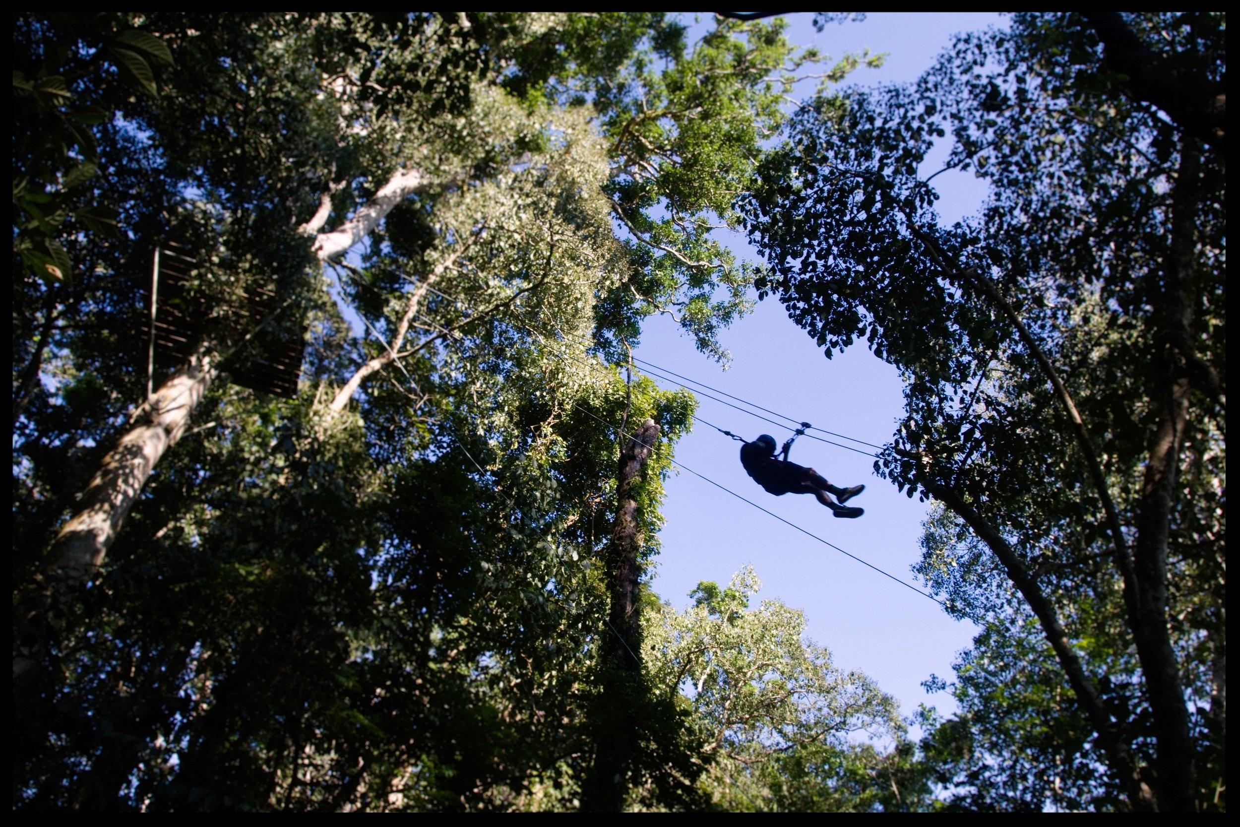 A guest zip-lining at Parque de Aventura Las Nubes, located on the Finca Las Nubes property.  Photo by Michael Mundt