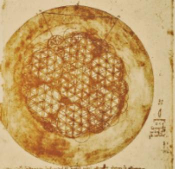 Leonardo DaVinci's Flower of Life