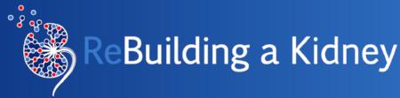 An NIH-NIDDK sponsored consortium: https://www.rebuildingakidney.org/about.html