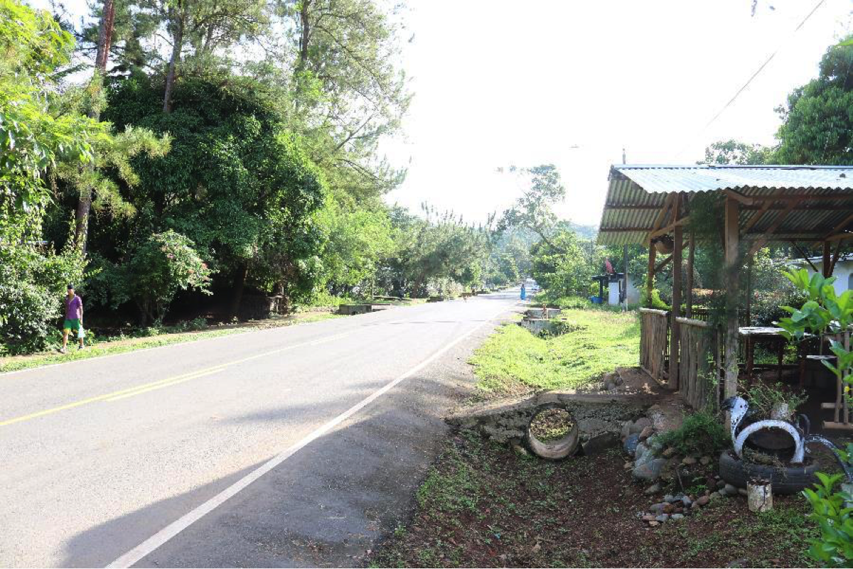 A view of the road from Doris's house. The road is paved because of Quebrada Guabo's proximity to the Pan-American highway.