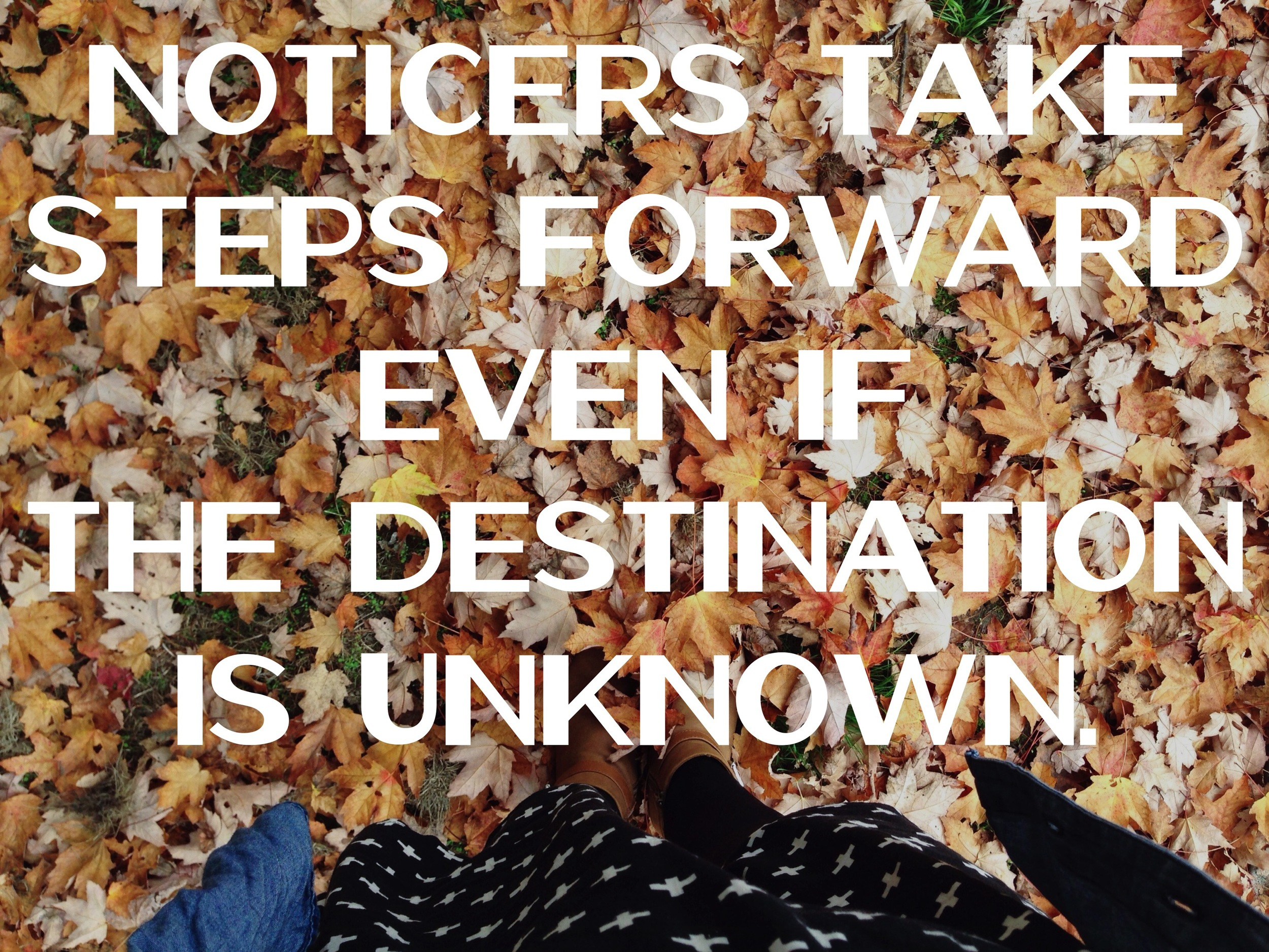 Noticers go into the unknown boldly nadinewouldsay