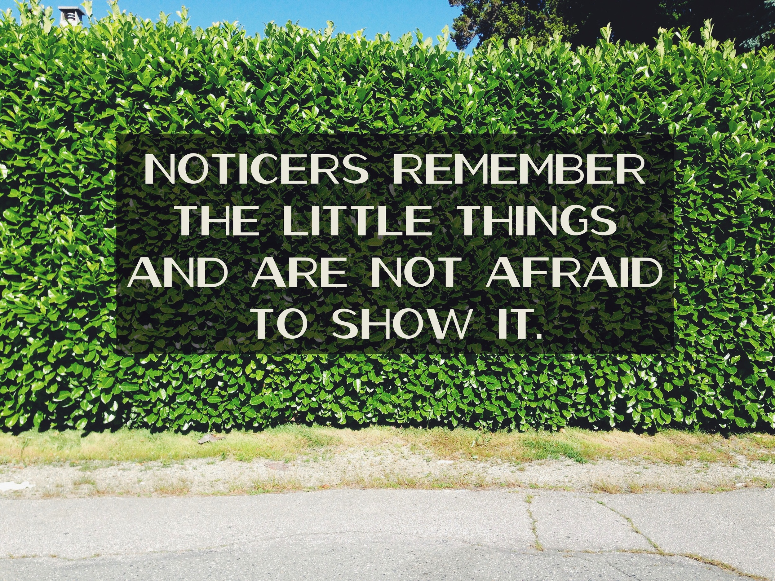remember the little things via nadinewouldsay