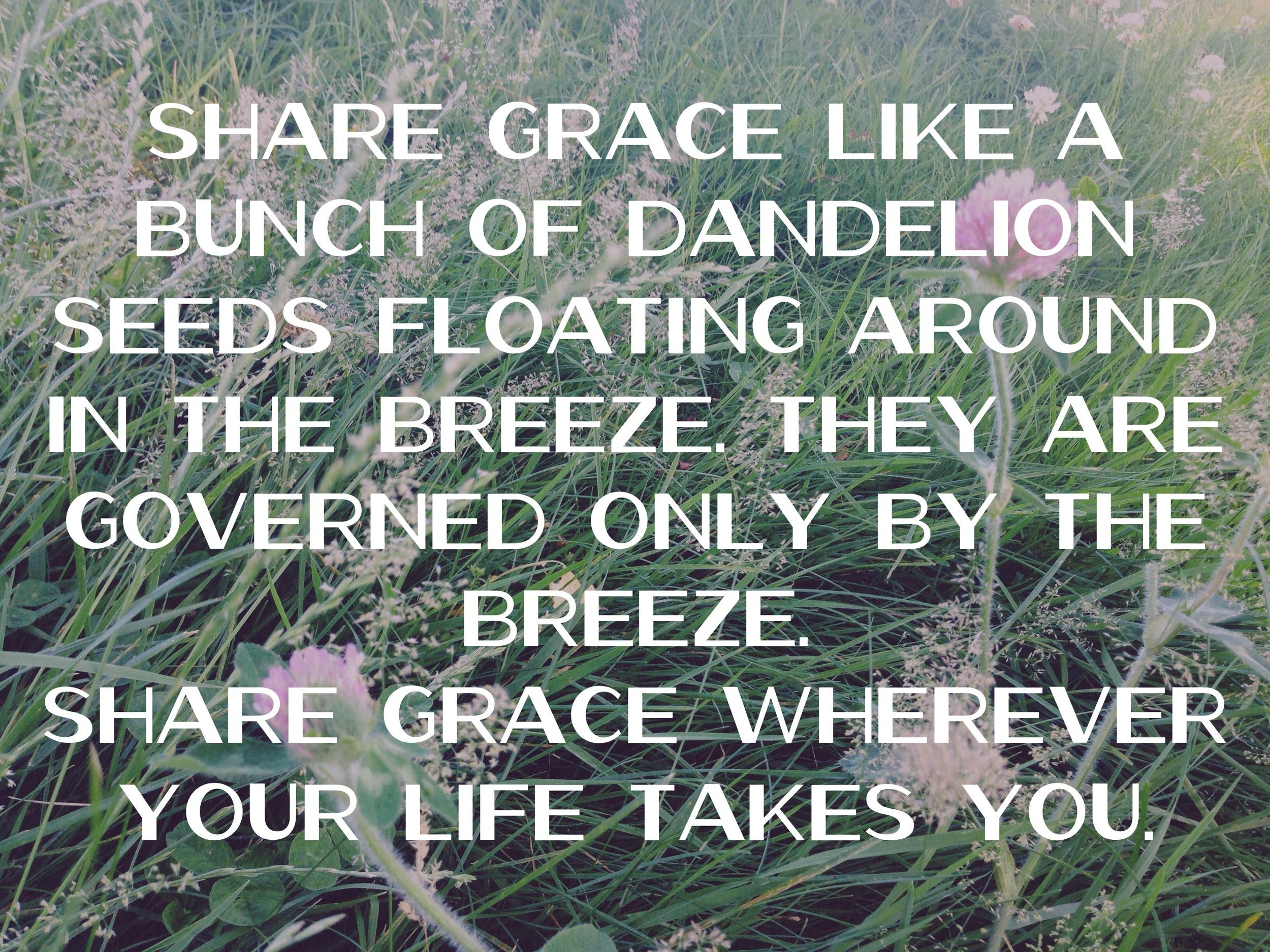 Share grace like danelion seeds floating around in the breeze via nadinewouldsay