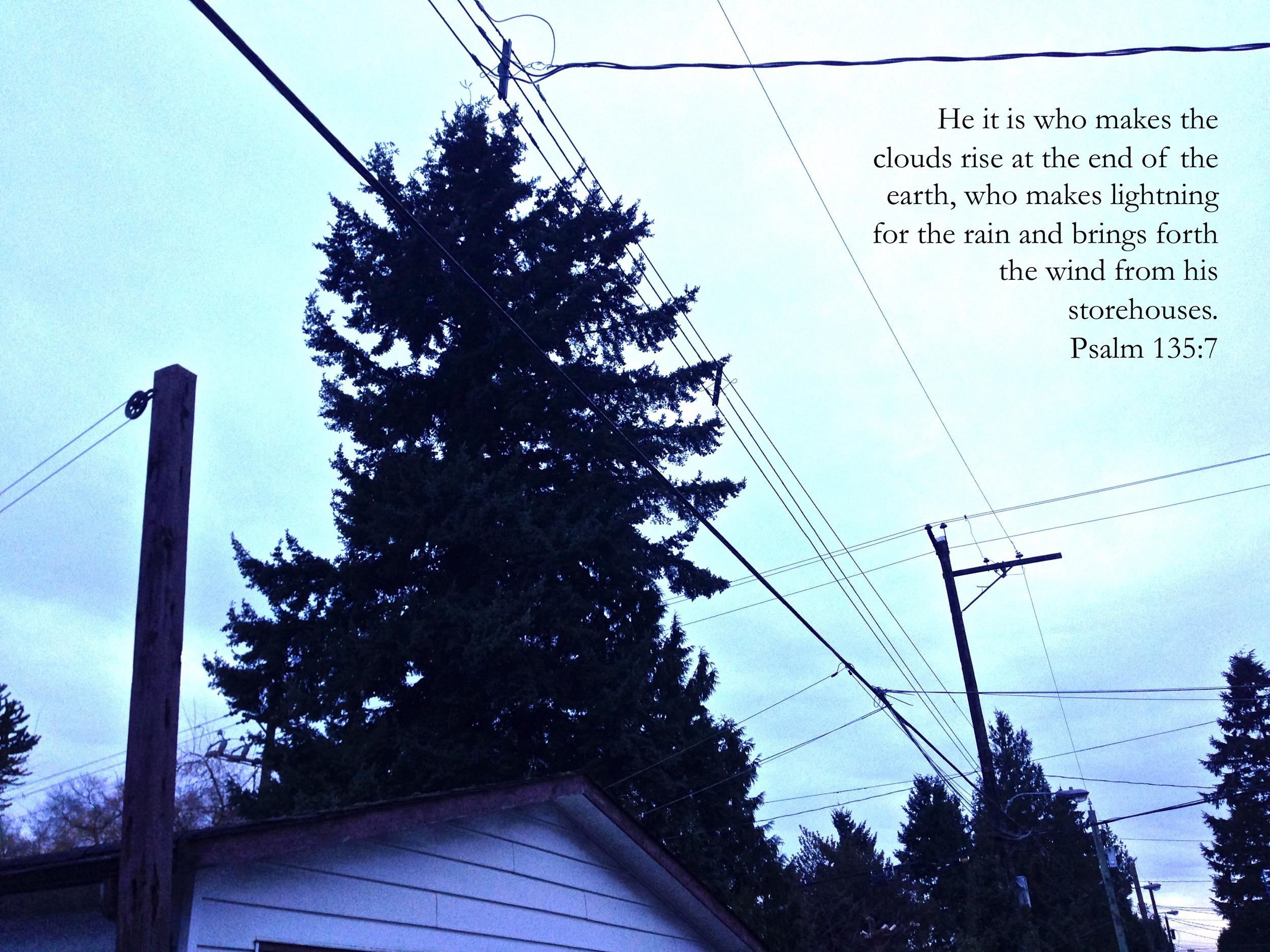 Psalm 135 via nadinewouldsay