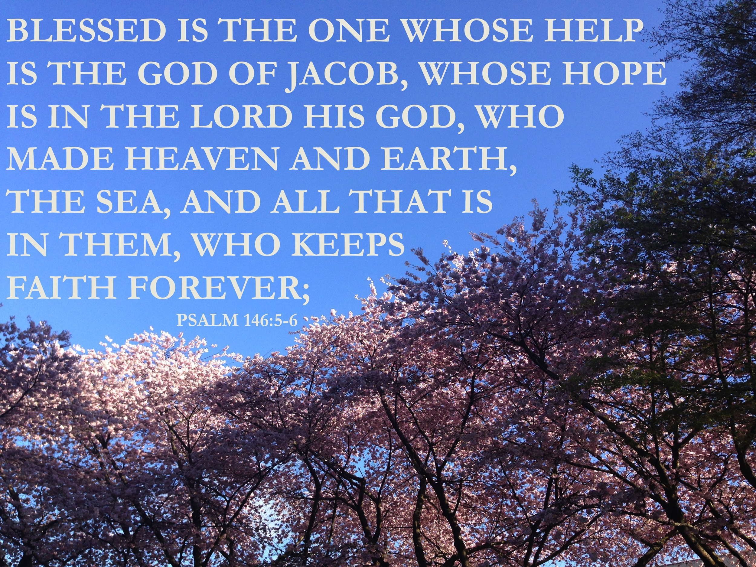 Psalm 146 via nadinewouldsay