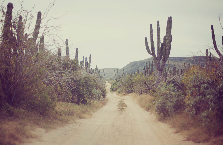 TravelPhotographer_TravelEditorial_Mexico_By_BriJohnson_0001.jpg
