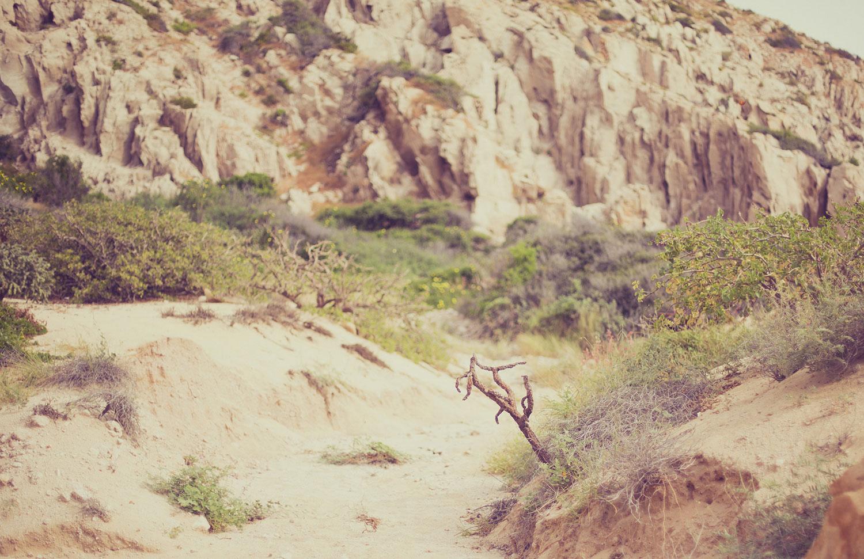 TravelPhotographer_TravelEditorial_Mexico_By_BriJohnson_0038.jpg