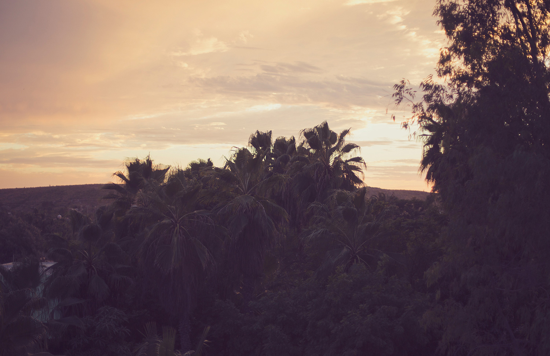 TravelPhotographer_TravelEditorial_Mexico_By_BriJohnson_0047.jpg