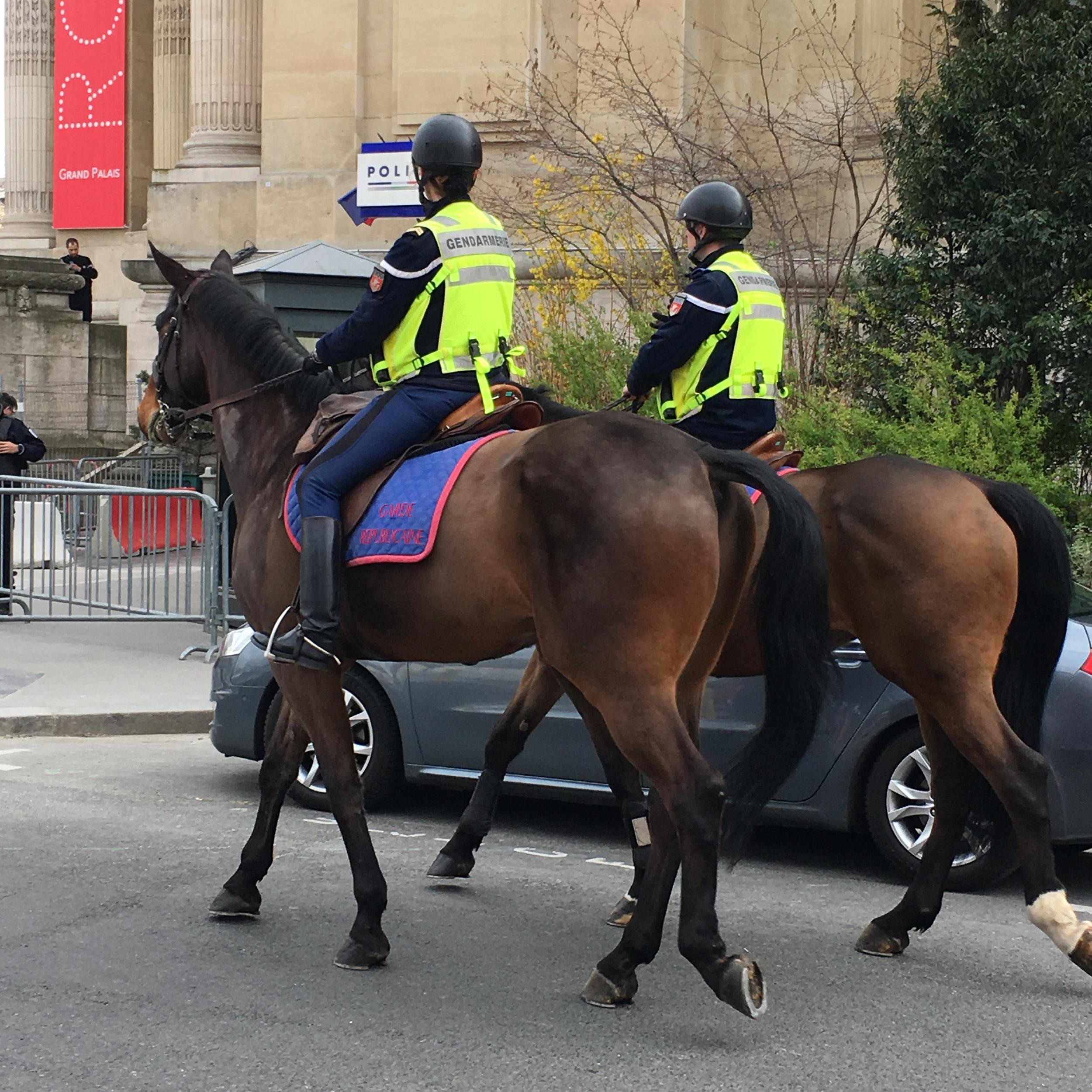 horse_patrols