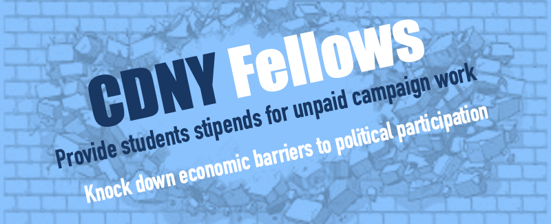 CDNY Fellows Banner.jpg