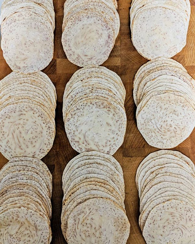 Getting these #tarotillas ready for packaging and freezing...then off to @ferm.farm with them! #taro #streettacos #tortillas