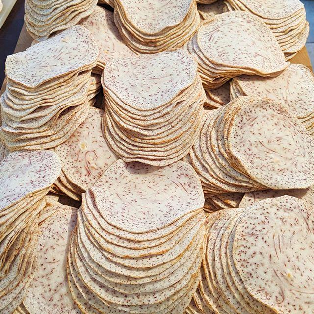Turning taro root into street taco sized tortillas. That's my jam. • • •  #cookuary #tarotillas @tarotillas #sidehustle #taro #tortillas