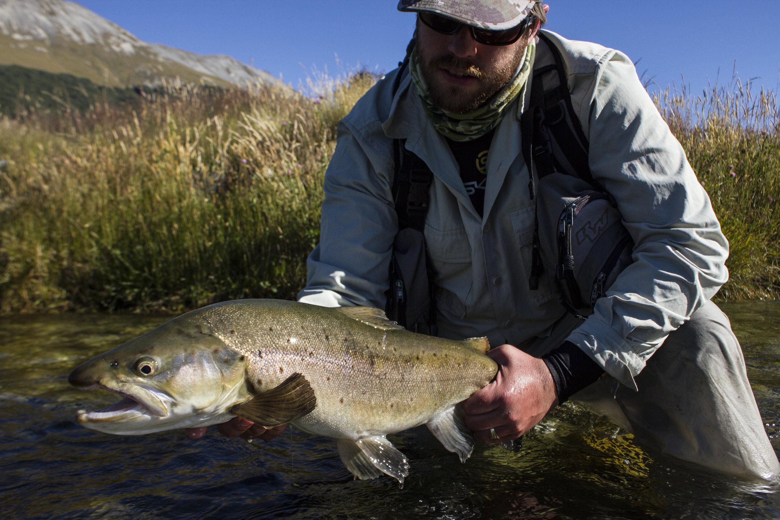 Big New Zealand brown trout James Wilkinson