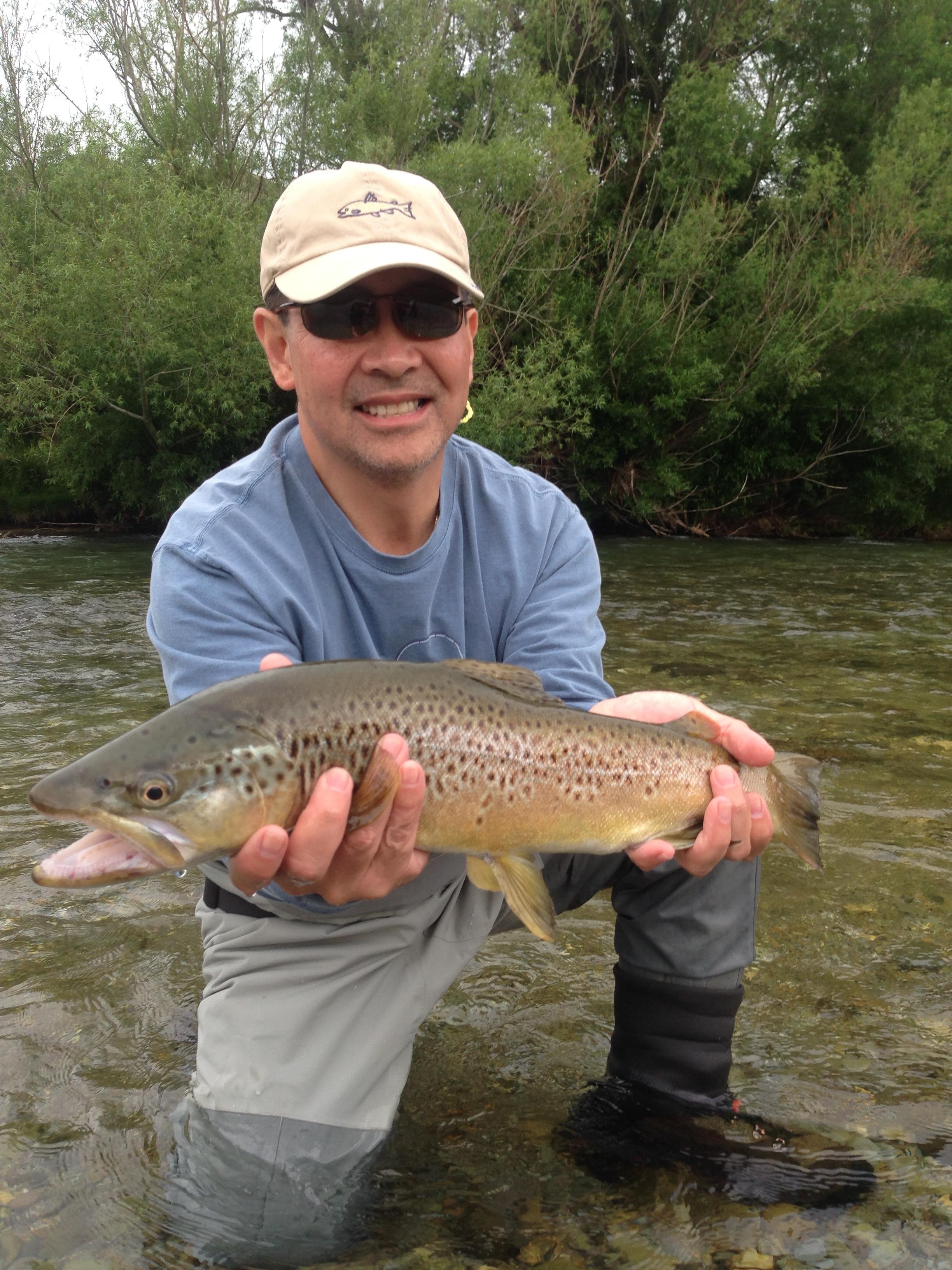Mataura river brown trout