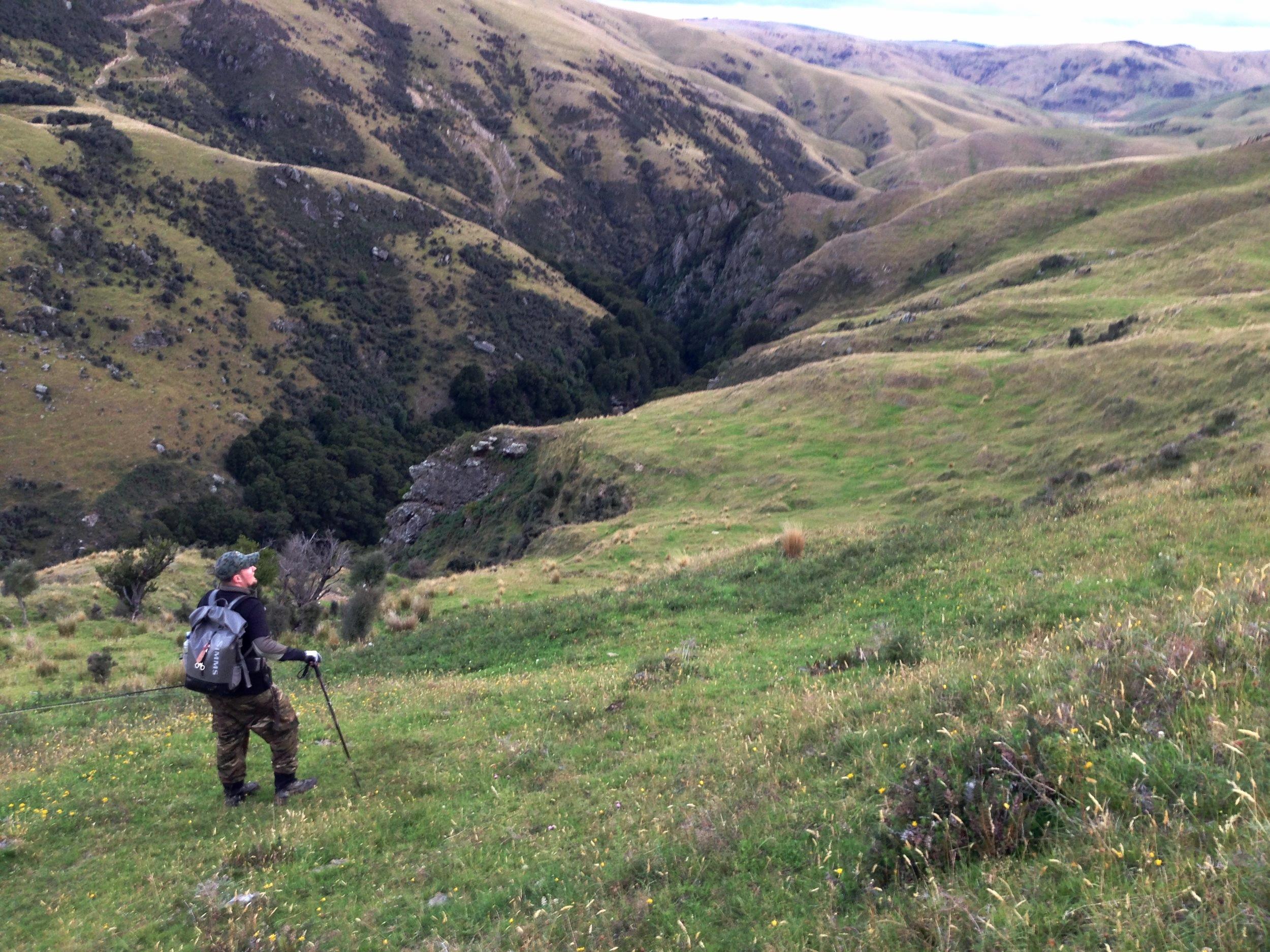 New Zealand gorge fly fishing