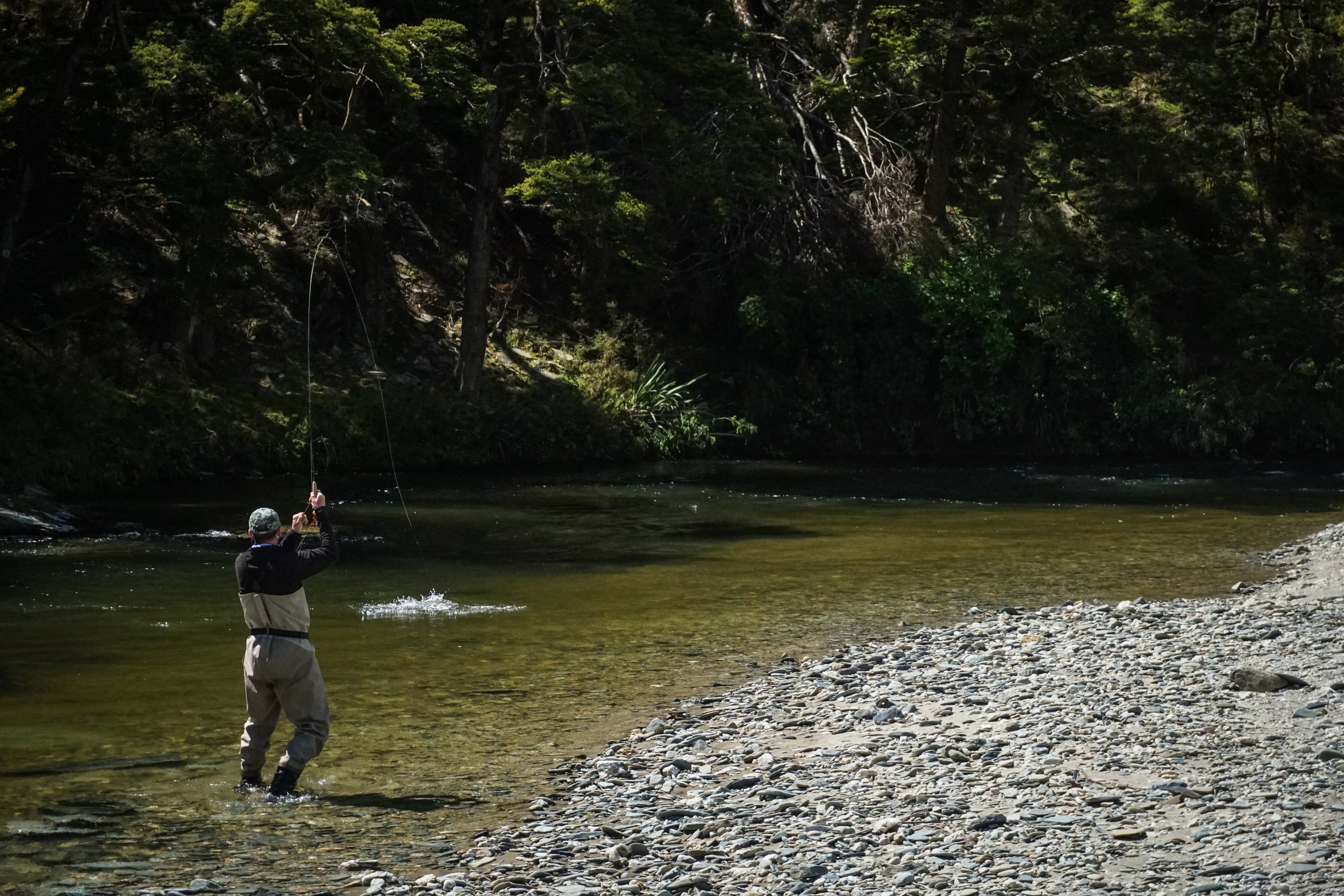 Fish on! New Zealand fly fishing