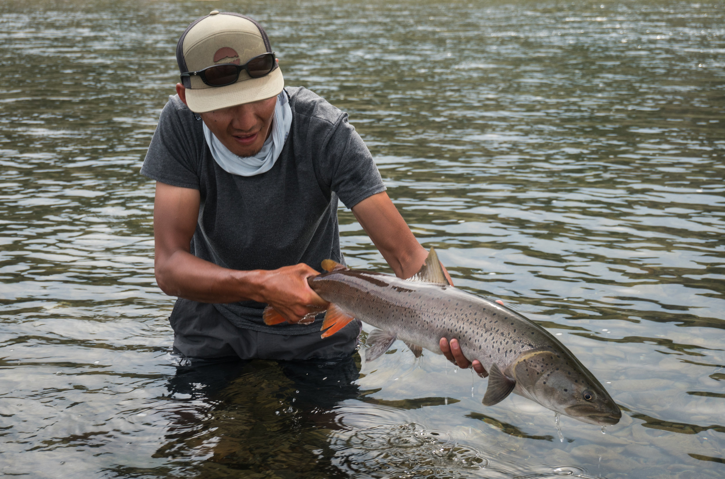 Mongolian fly fishing guide Zolboo with a taimen