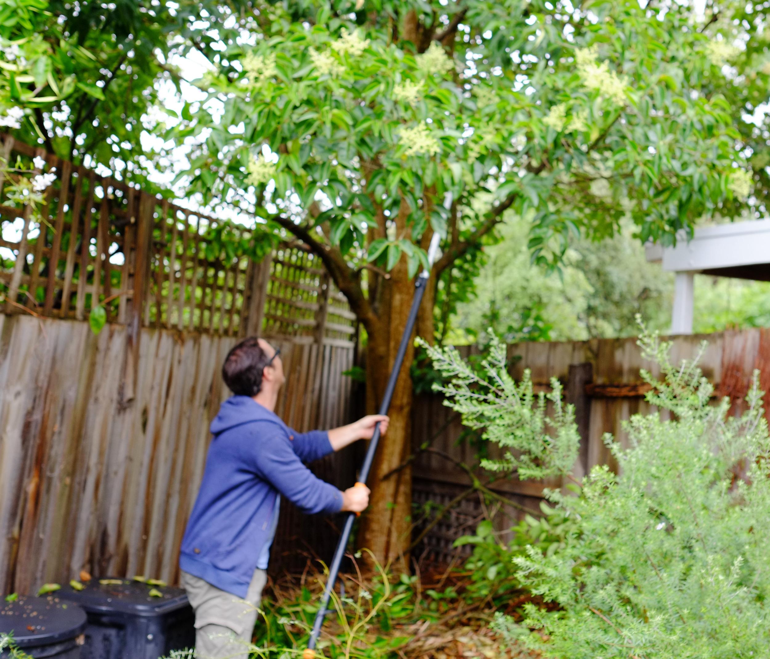 clearing garden waste