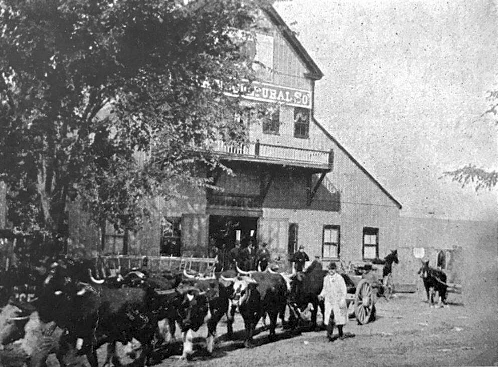 "Amesbury & Salisbury Agricultural Society exhibition building from 1906 postcard. Note on card: ""Oxen of J. P. Little (Woodsom) farm, shown at fair ca. 1900."" Courtesy of History Dept., Amesbury Public Library."