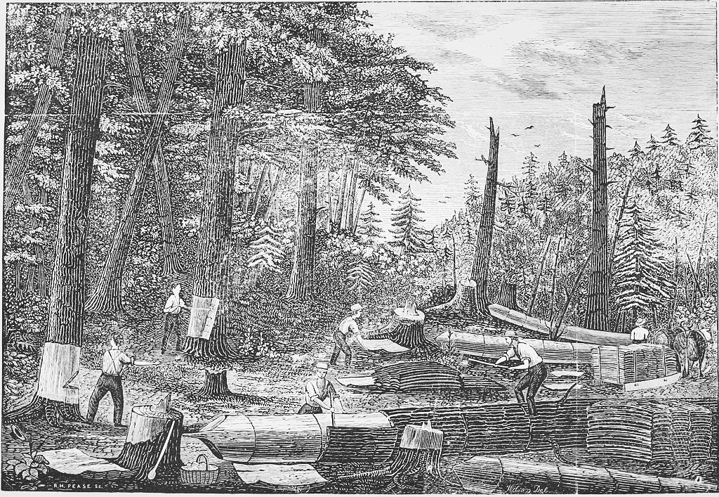 "Figure 2: Workers peeling hemlock bark for the tannery in Prattsville, New York (1850). (""Tanbark,"" Wikipedia.)"