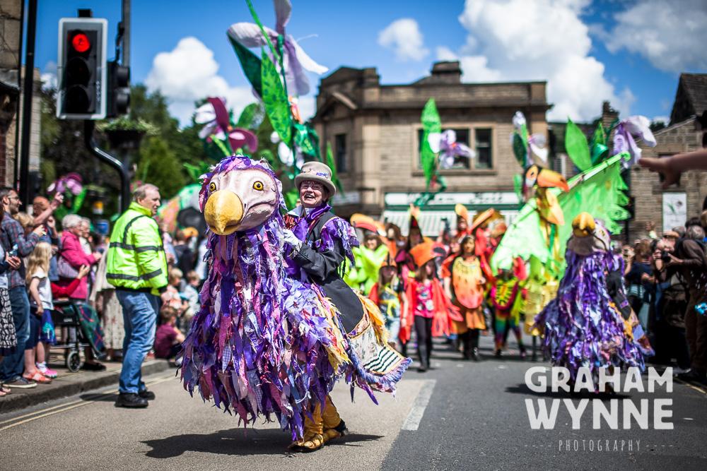 Dodos leading the parade
