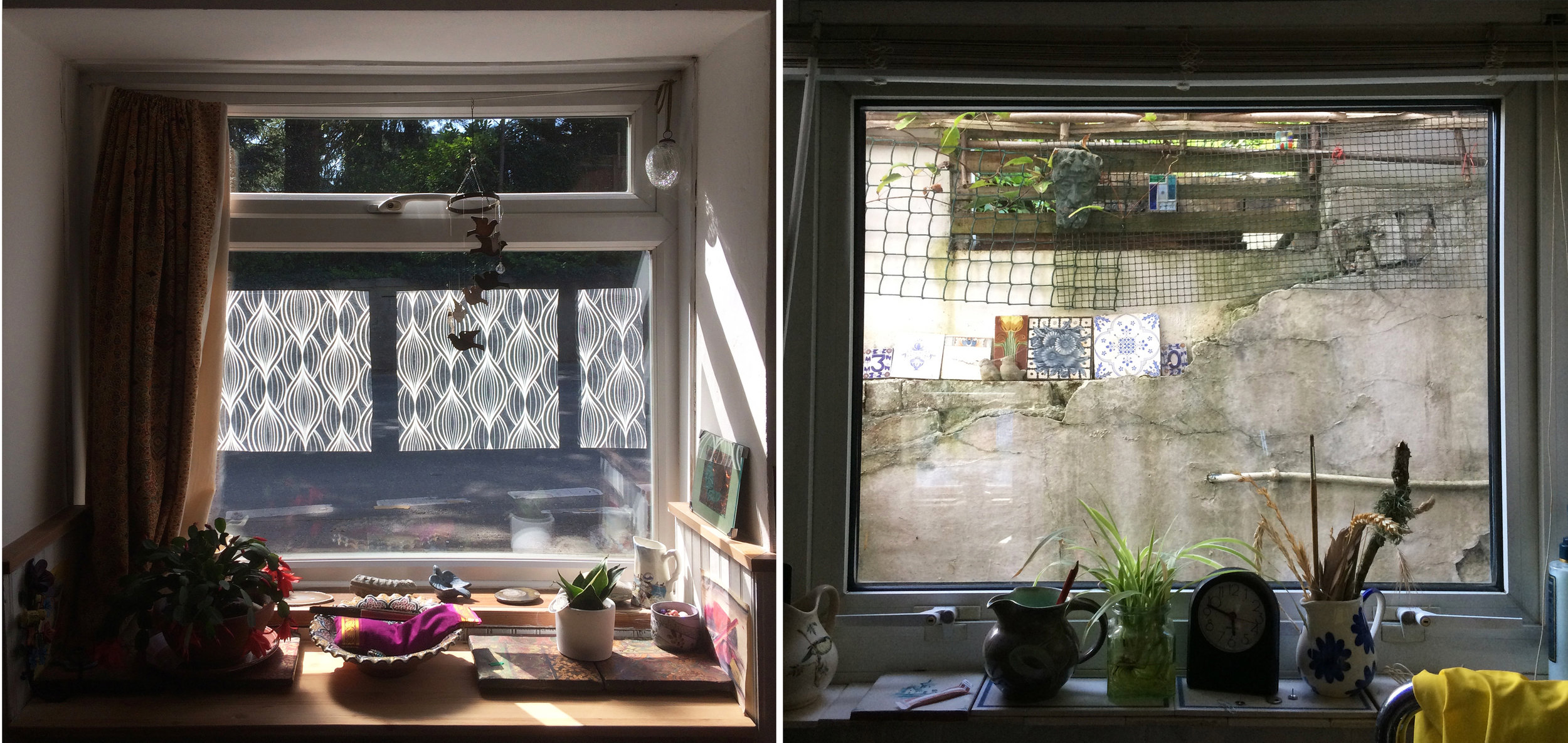 Left, roadside front window before. Right, kitchen window.