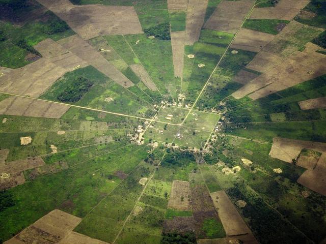 Deforestation, Bolivian Amazon. Photo by Paul B Jones