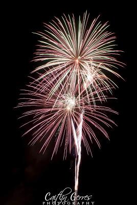 Fireworks-21w.jpg