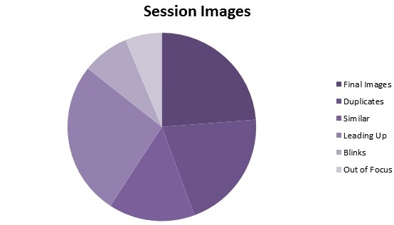 session+images+pie+chart.jpg