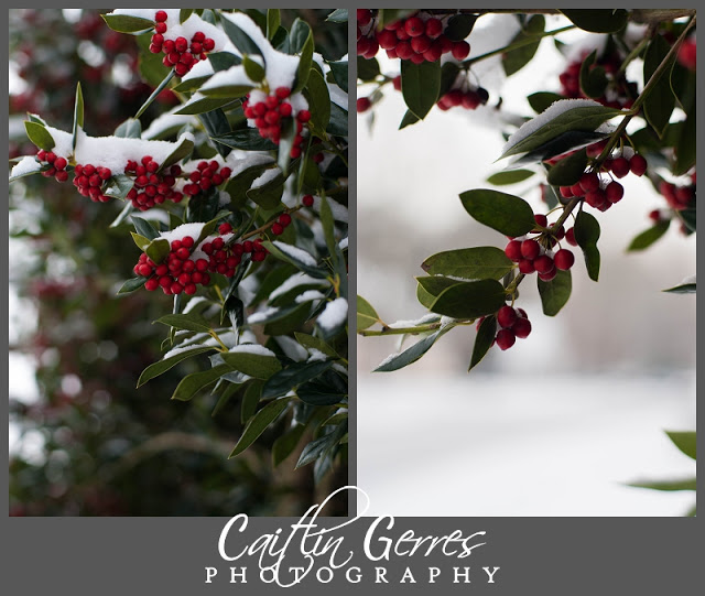 Snow+Photo+Walk-29_LPT.jpg