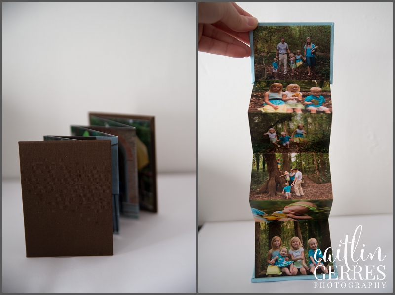 Caitlin Gerres Photography Albums-10_DSK.jpg