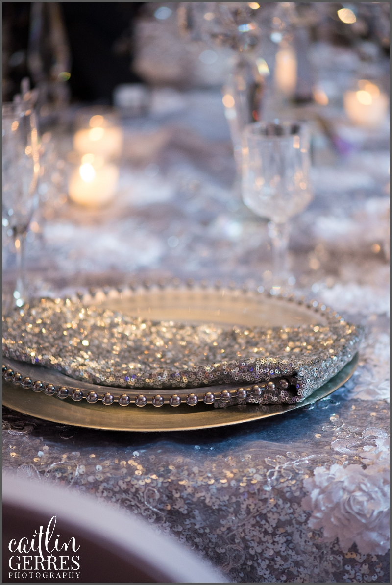 Crystal Clear Event.Waterford Event Rentals-101_DSK.jpg