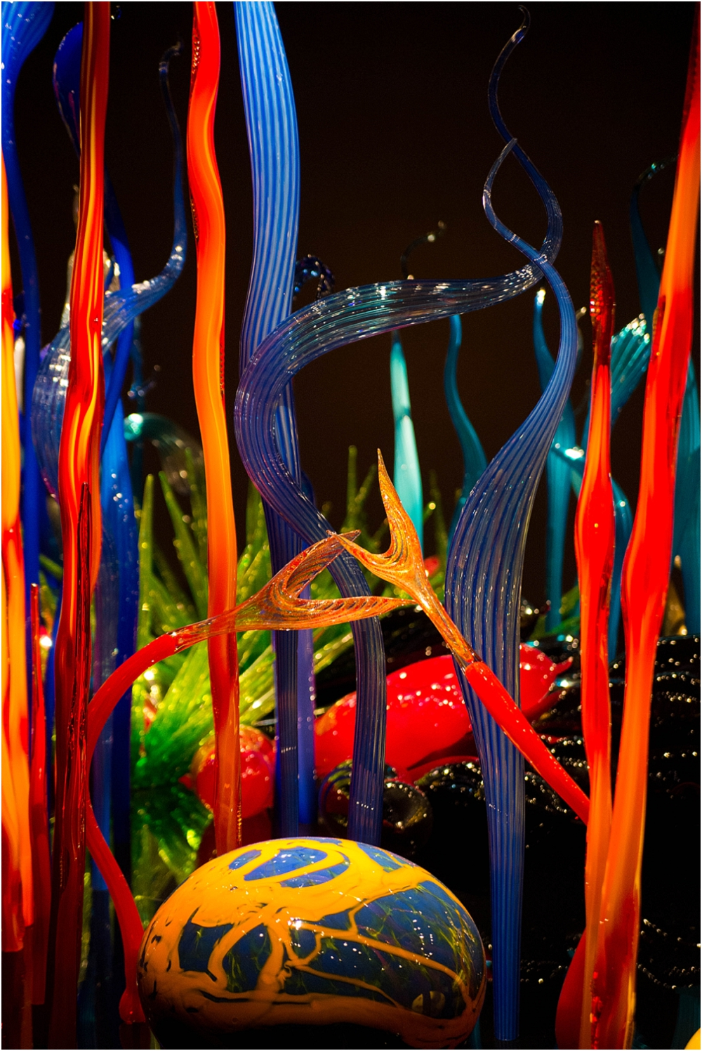 Chihuly Gardens and Glass Seattle-122_WEB.jpg