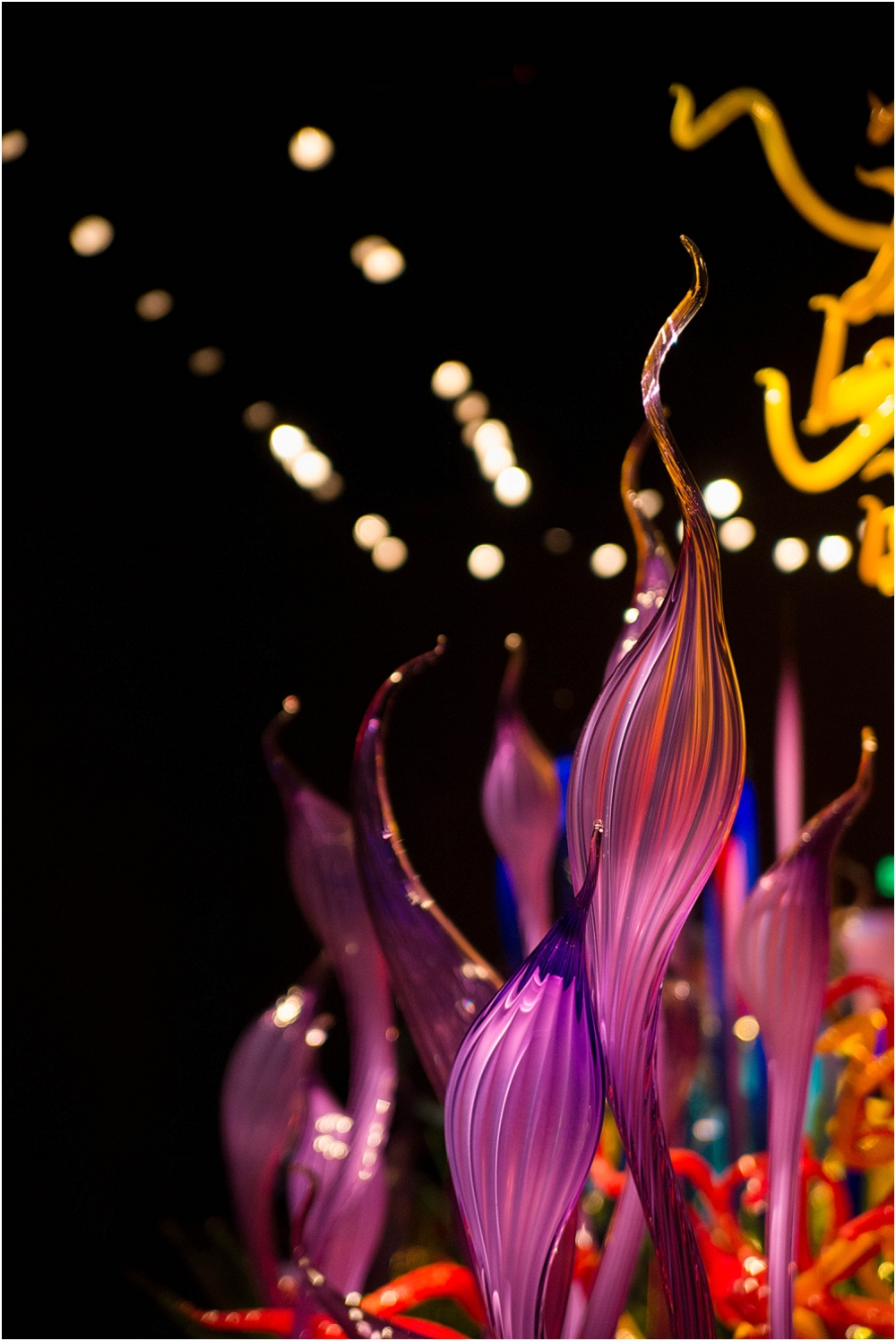 Chihuly Gardens and Glass Seattle-131_WEB.jpg