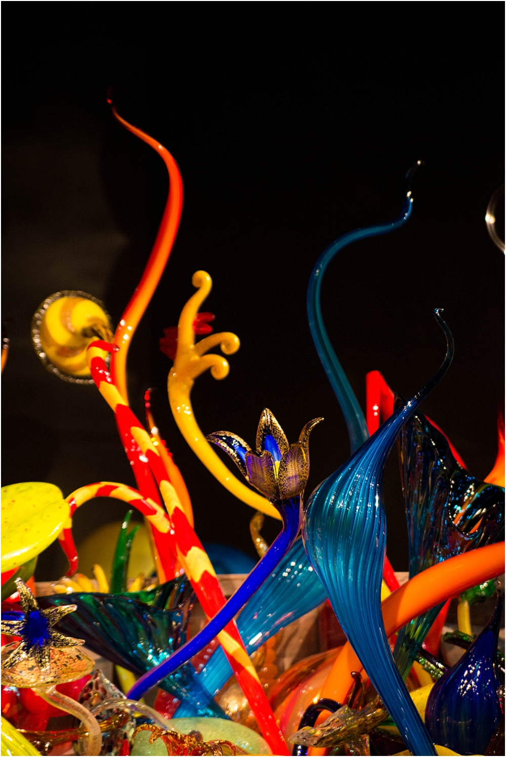 Chihuly Gardens and Glass Seattle-141_WEB.jpg