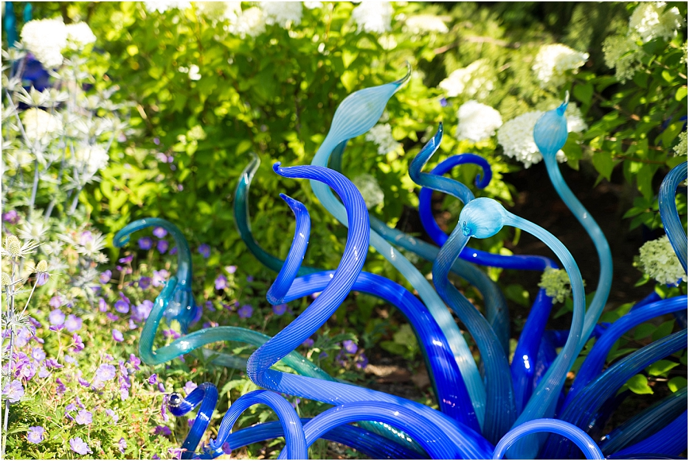 Chihuly Gardens and Glass Seattle-189_WEB.jpg