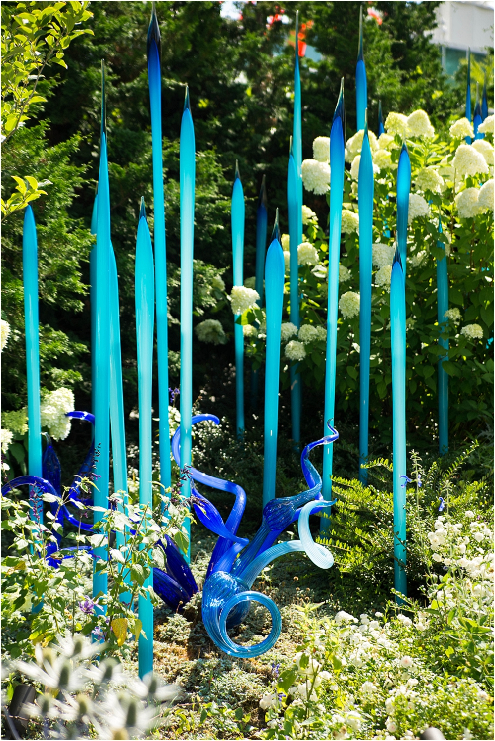 Chihuly Gardens and Glass Seattle-188_WEB.jpg