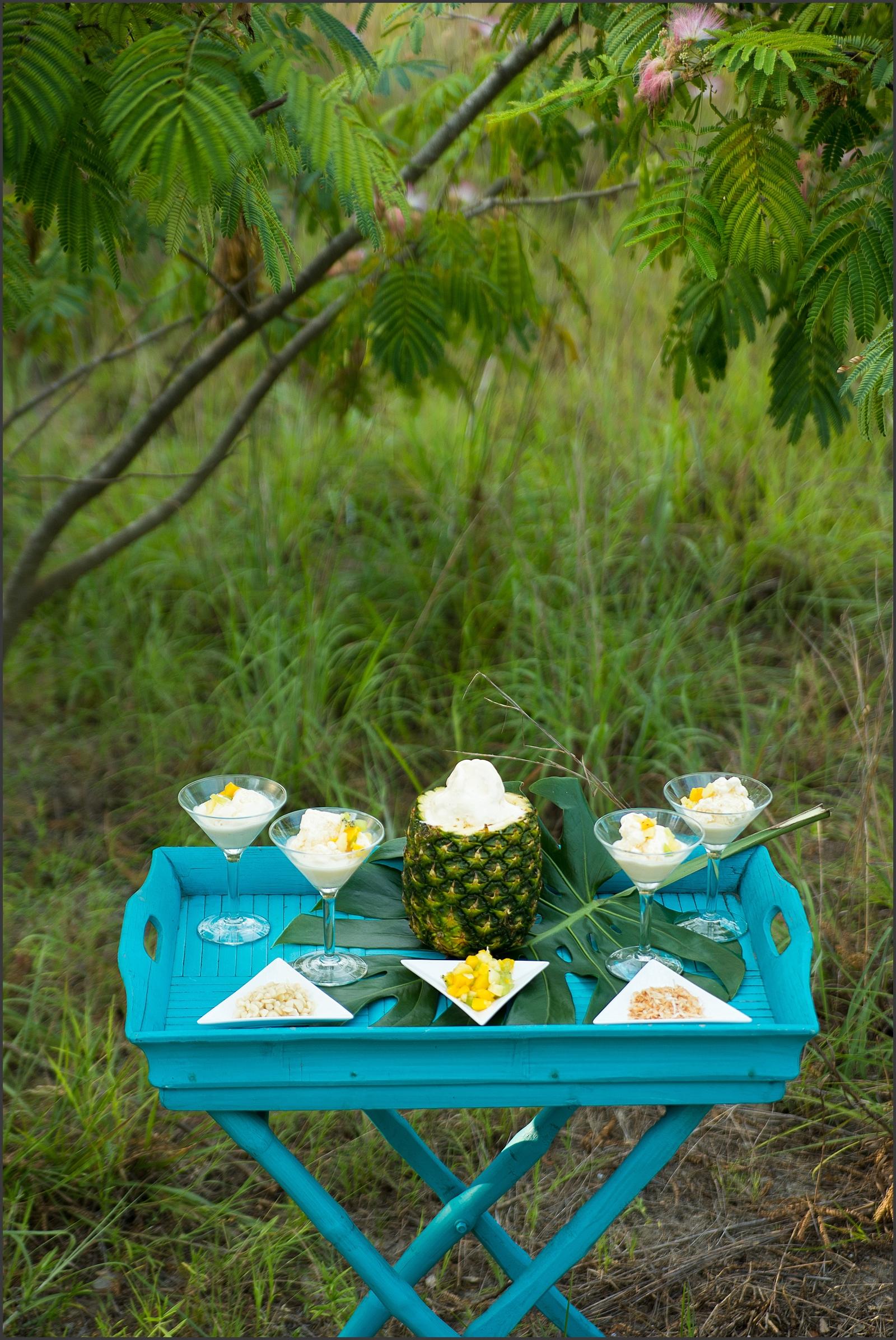 Tropical Styled Shoot-215_WEB.jpg