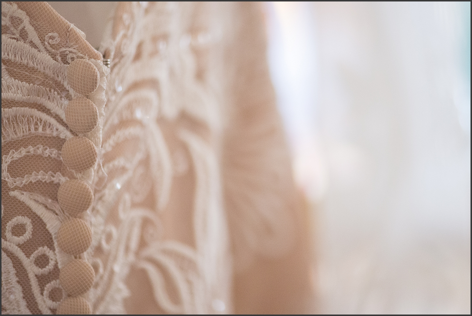 Blush and Navy Norfolk Botanical Gardens Wedding Photo-101_WEB.jpg