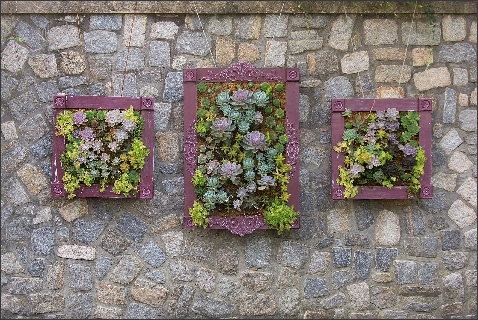 Blush and Navy Norfolk Botanical Gardens Wedding Photo-121_WEB.jpg