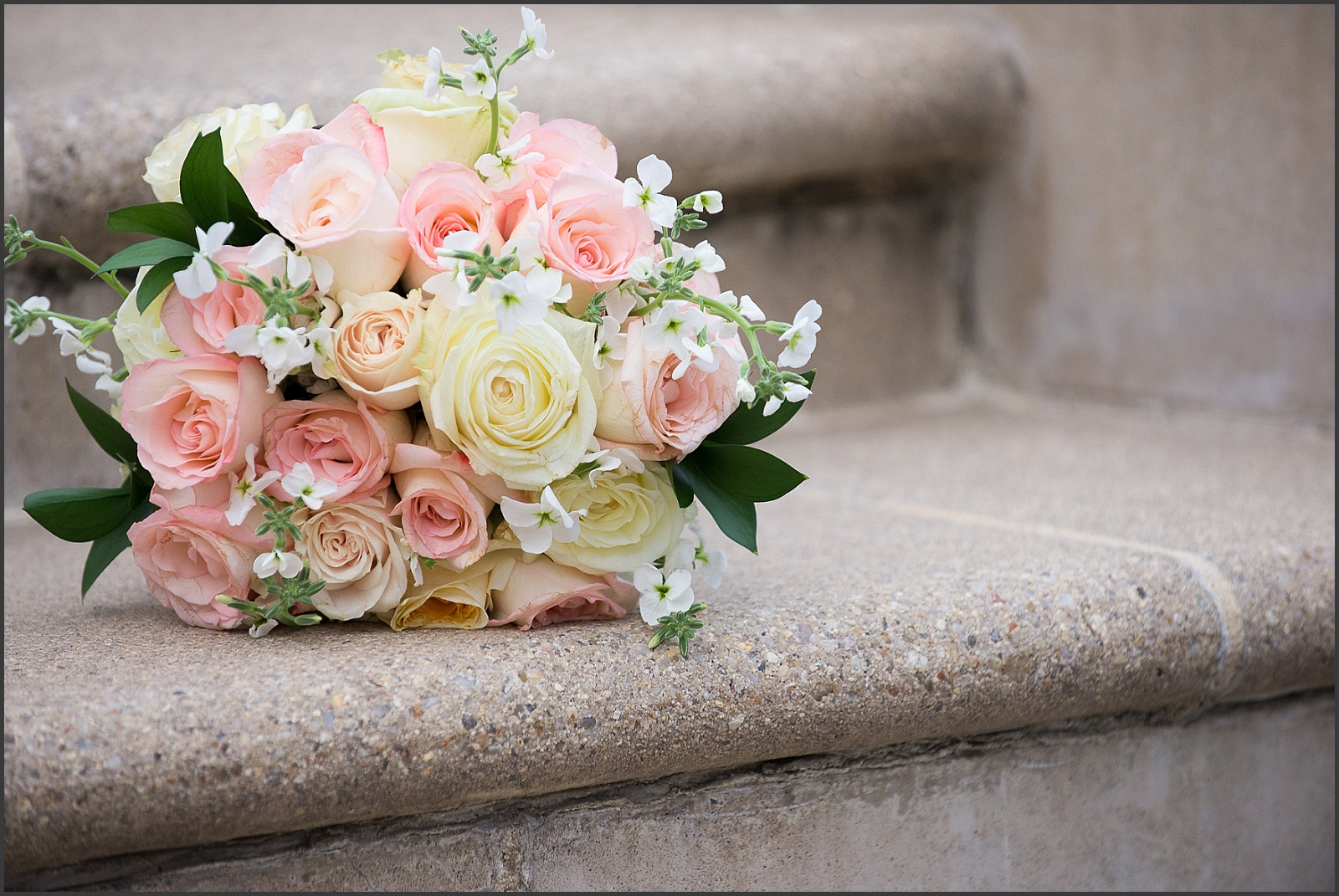 Blush and Navy Norfolk Botanical Gardens Wedding Photo-230_WEB.jpg