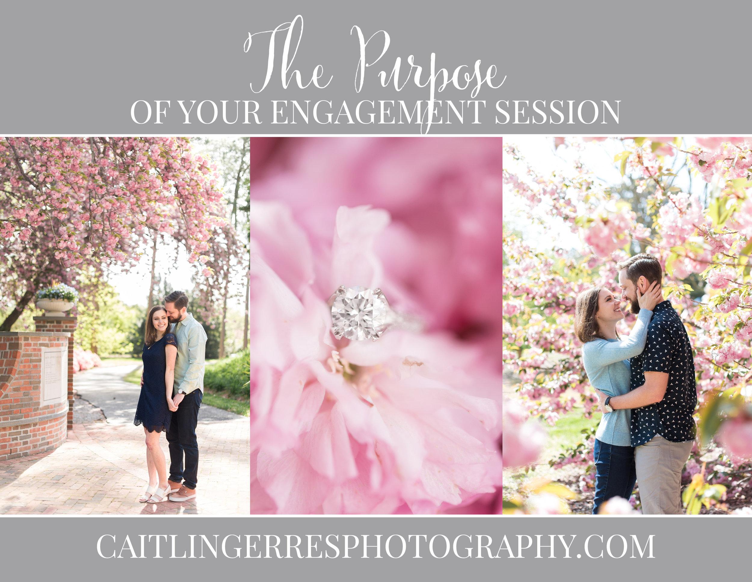 Engagement Session Purpose.jpg