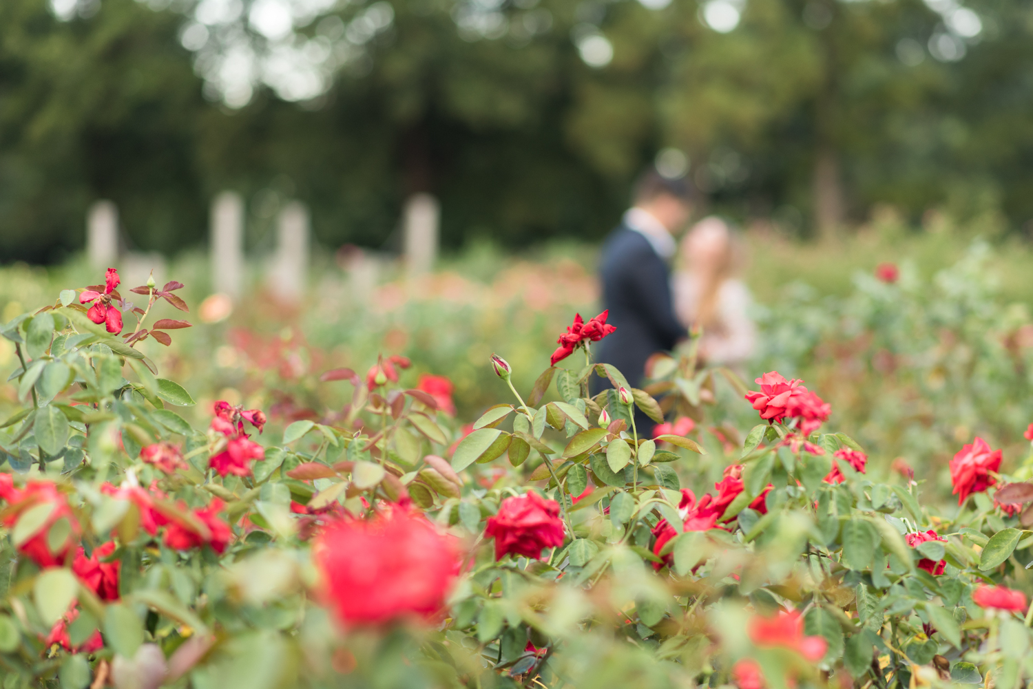 Formal Engagement Session at Norfolk Botanical Garden-102.jpg