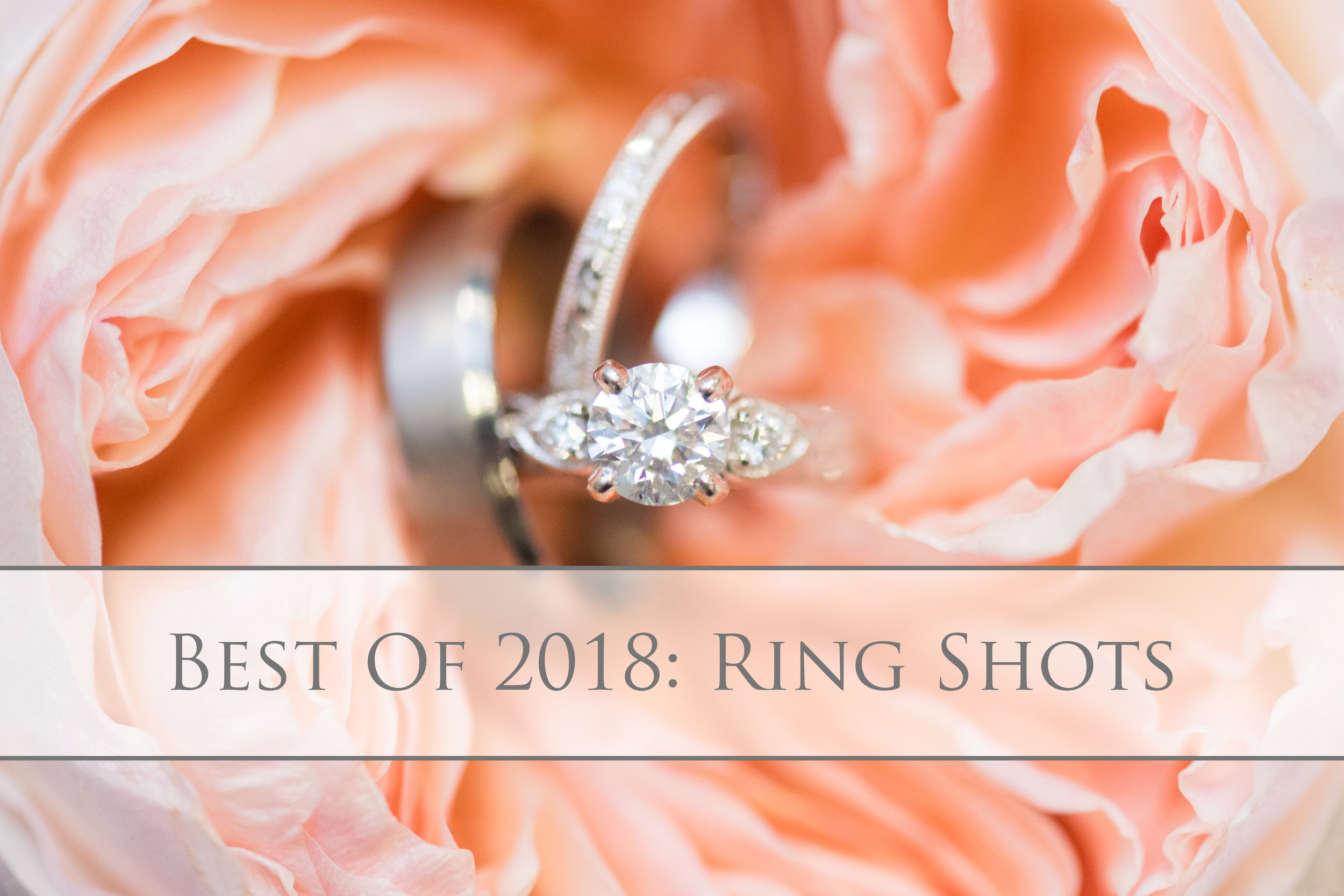 Best of 2018 Ring Shots.jpg