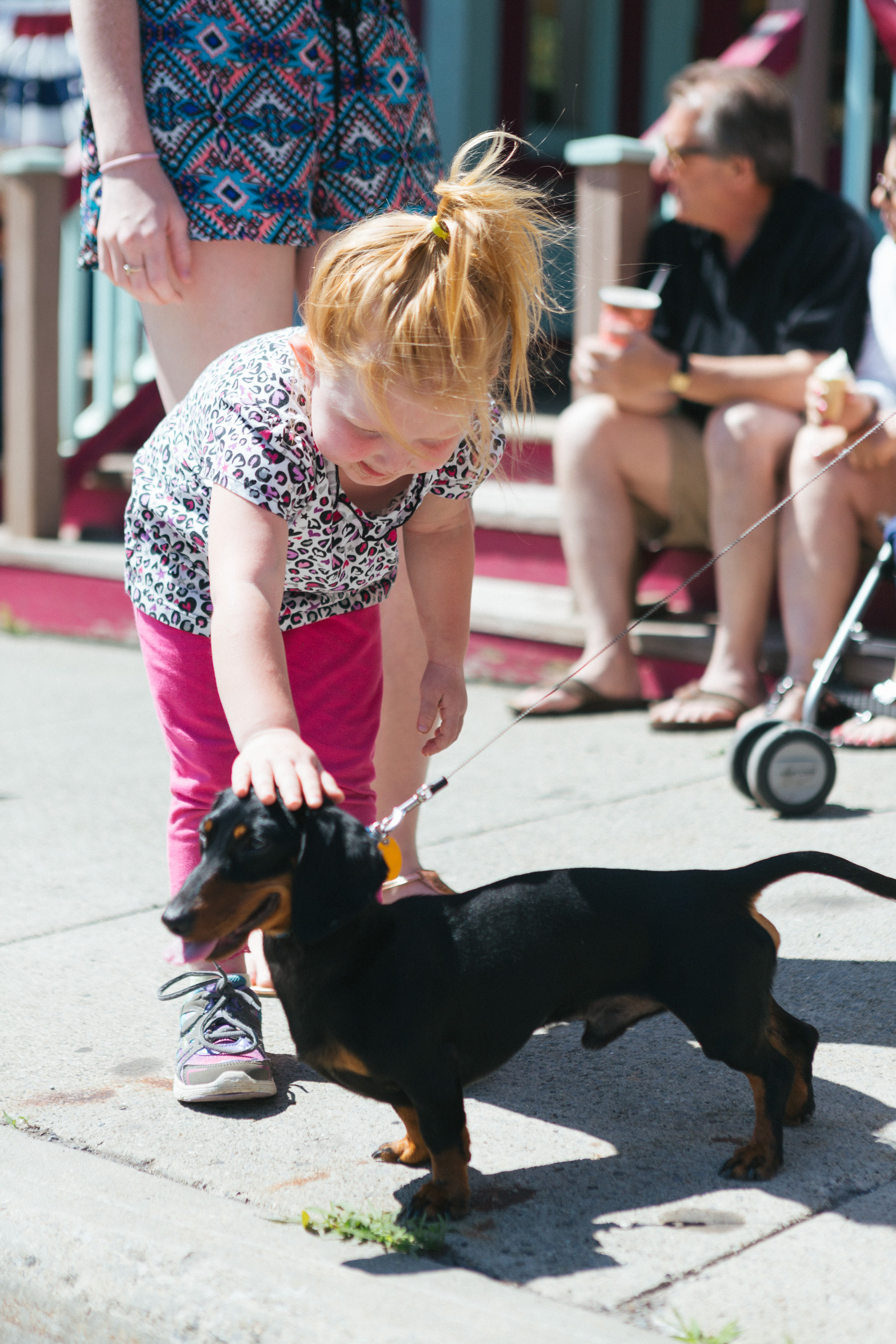 A toddler pets a puppy on Main Street in Tannersville.jpg