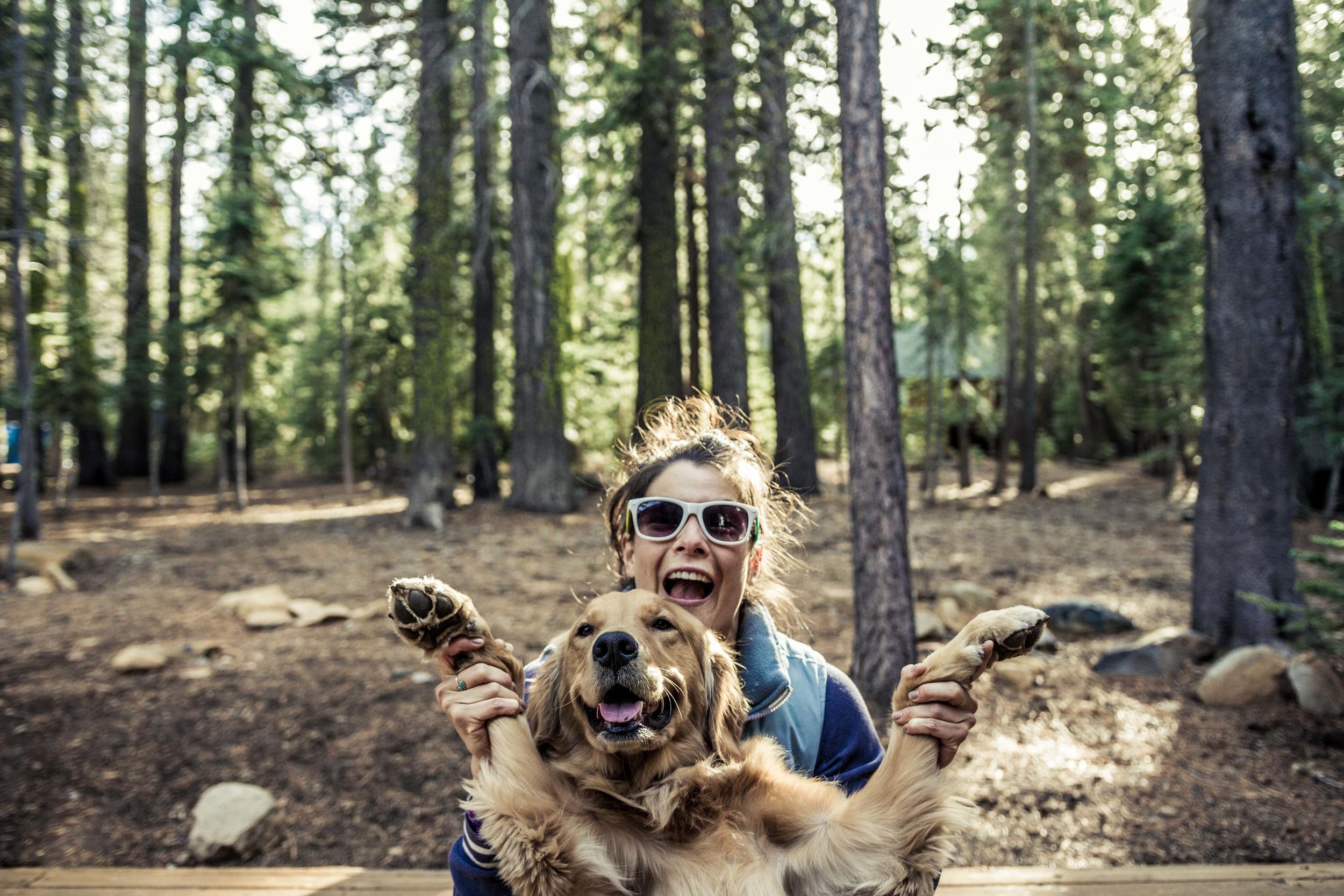 Tahoe-HappyDogs1.jpg