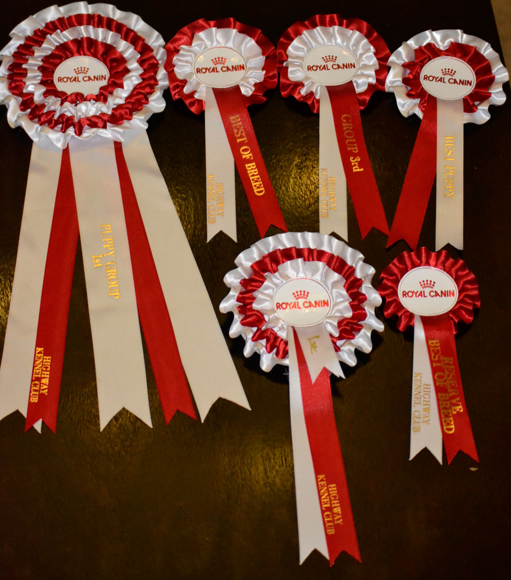 All Maluko,s very first show prizes