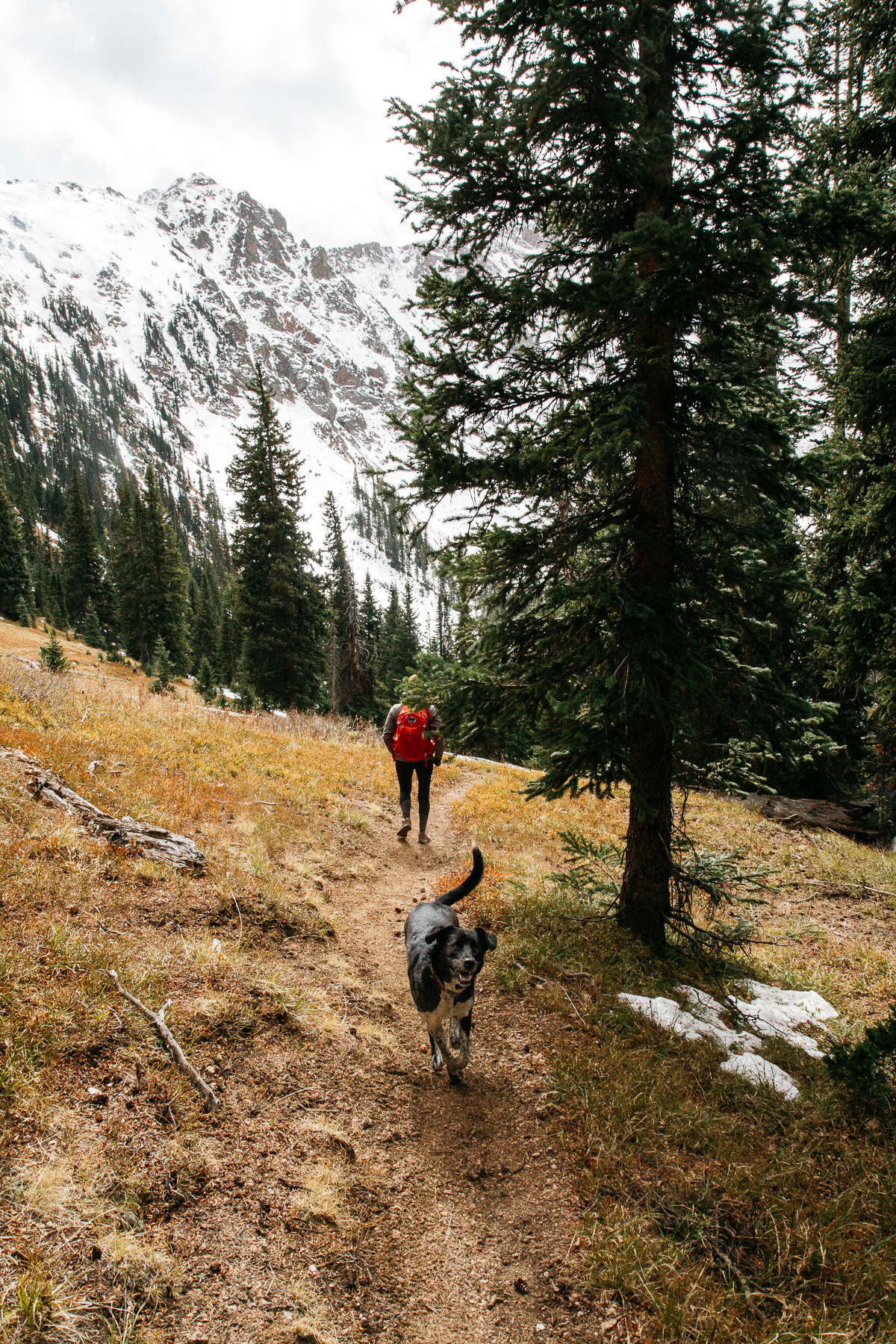 Colorado2017_RedBuffalo_0331.JPG