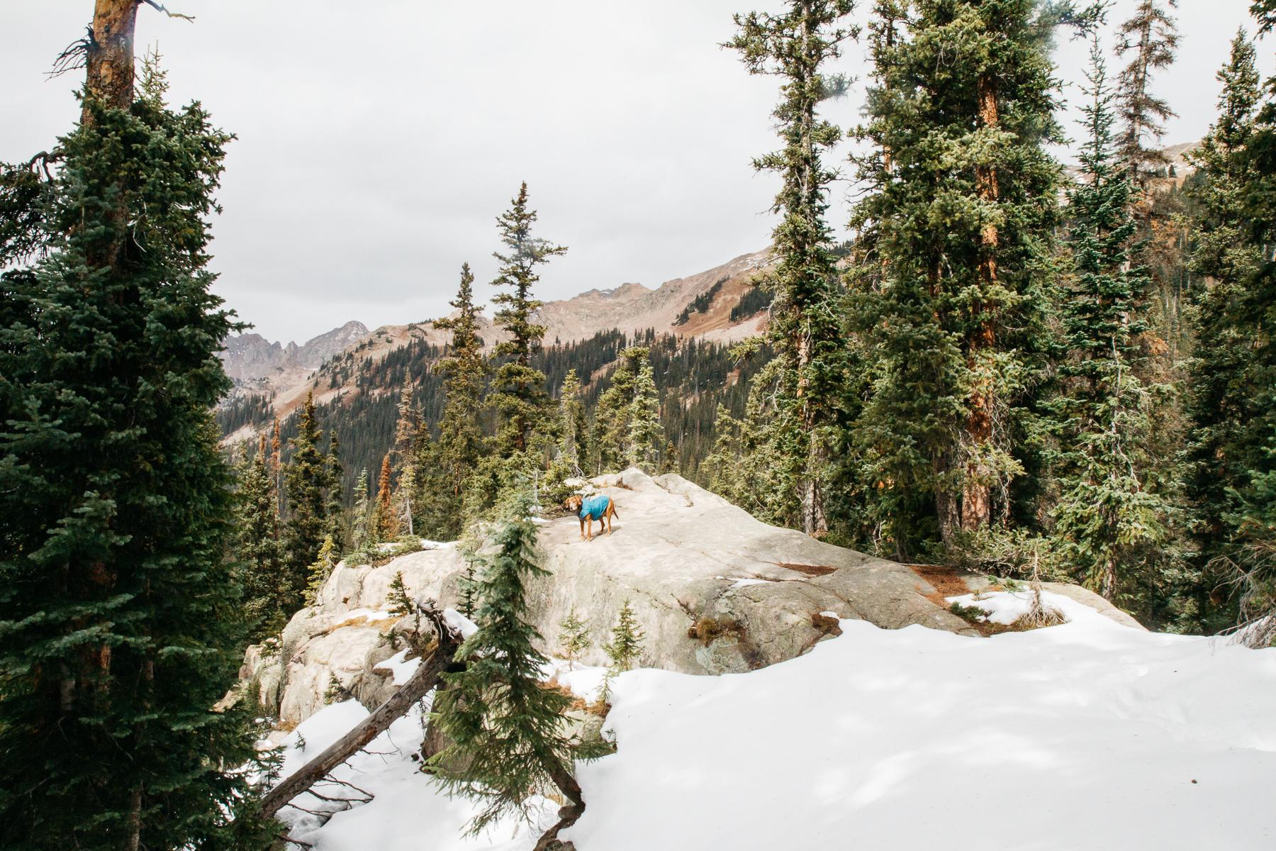 Colorado2017_RedBuffalo_0369.JPG